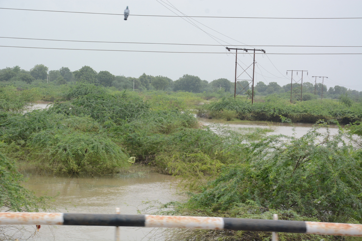 Visit Different Villages of Banaskantha in Gujarat – Help to Flood Effected Peoples